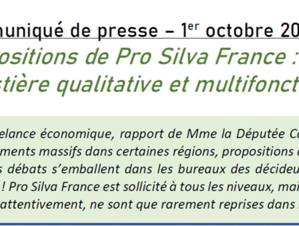 Réaction et propositions de Pro Silva France face aux actualités (Plan de Relance, rapport de Mme Cattelot...)