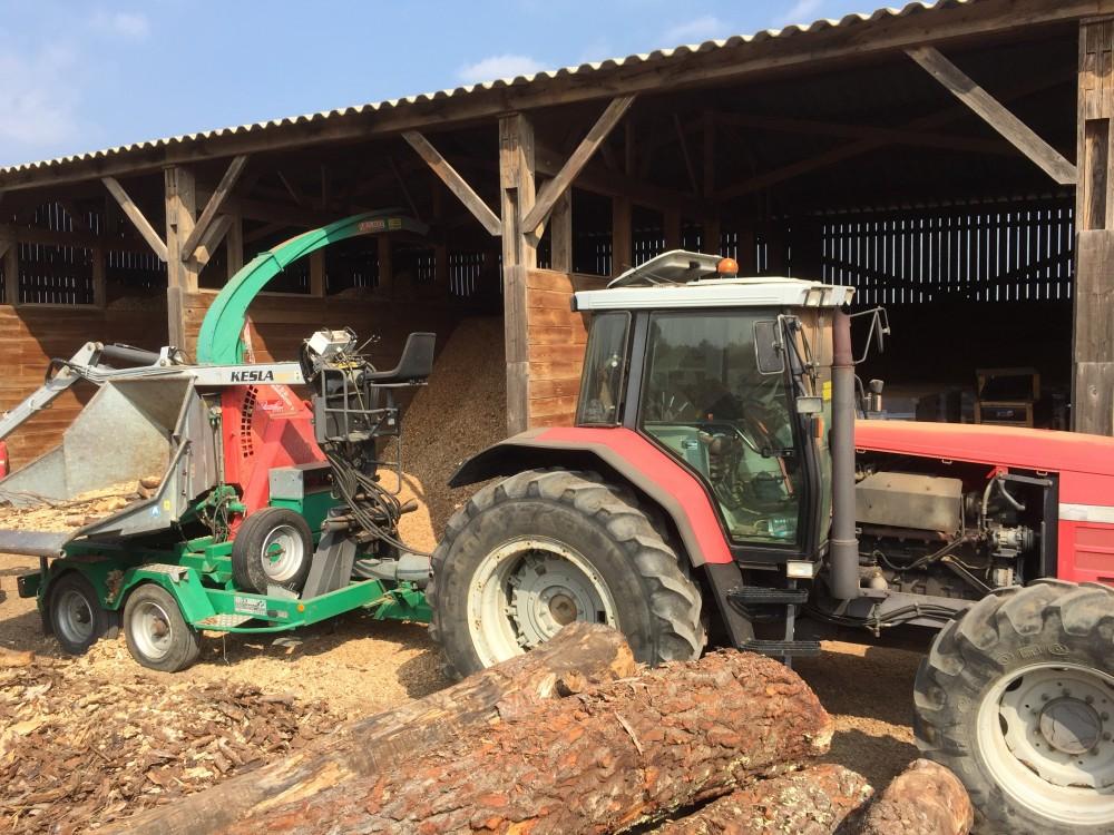 EDITO Bois Energie International mai 2021 - Plaidoyer pour la futaie irrégulière