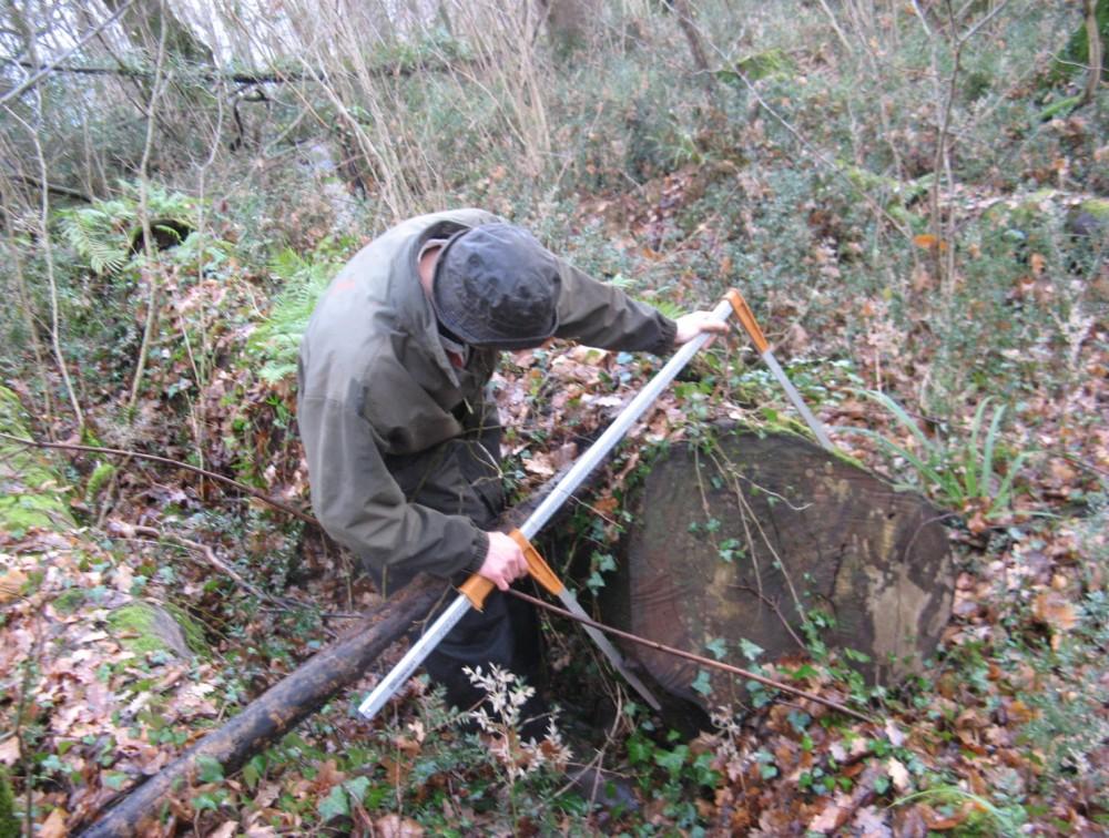 FORMATION : Suivre et contrôler le traitement irrégulier des forêts. Systèmes d'inventaires et de placettes permanentes