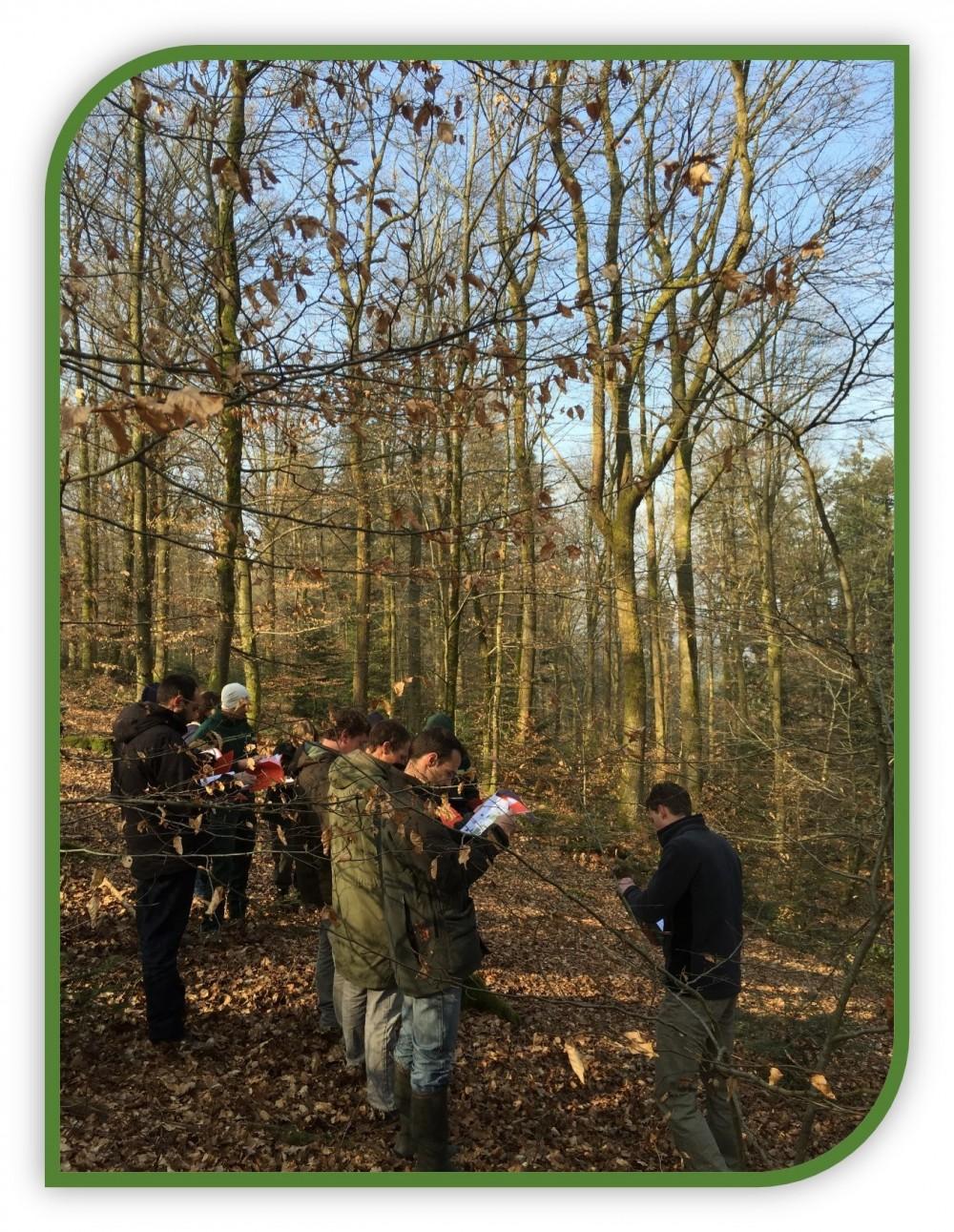 FORMATION : Mettre en oeuvre le traitement irrégulier des forêts. Description des peuplements et planification des interventions en sylviculture à couvert continu
